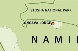 Ongava Lodge map ©Wilderness Safaris